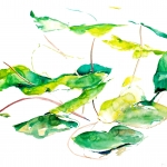 Chuang, Leaves