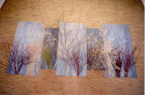 branches_on_panels