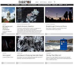 The Curator website
